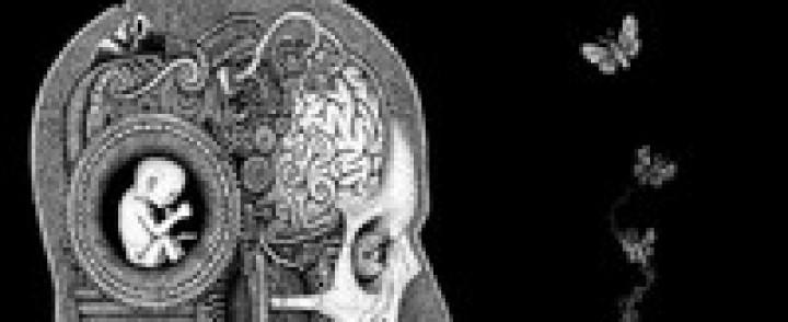 Soen: Cognitive (2012) – suoraa Tool-kopiointia