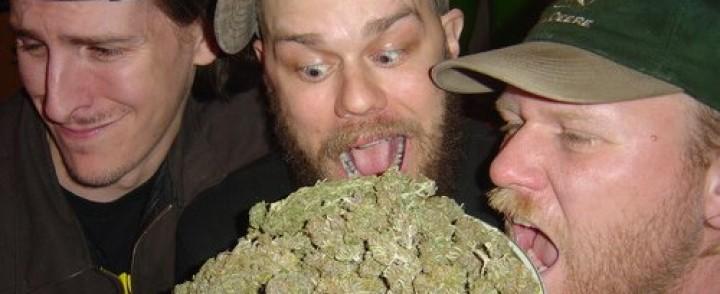 Sludgen ystävien hemmottelu senkun jatkuu, nyt pistellään poskeen marihuanaa [KEIKKAPAIKKA VAIHTUNUT]
