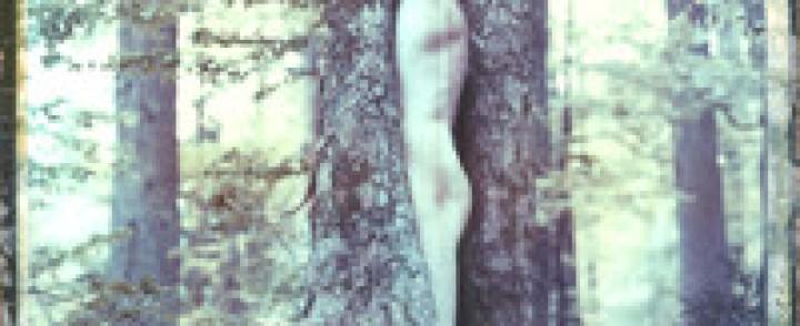 Hexvessel : No Holier Temple – Luontoäidin hellässä huomassa