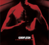 Retro 2014 – Godflesh
