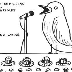 The Levy – Malcolm Middleton kaverinsa järjettömien runojen ääressä