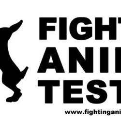 Taiteilijaa kidutettiin eläinkokeita vastustavassa kampanjassa