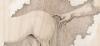 Retro 2015 – Horse Attack Sqwad – Hevosia ei ongelmia