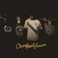 clearsoulforces